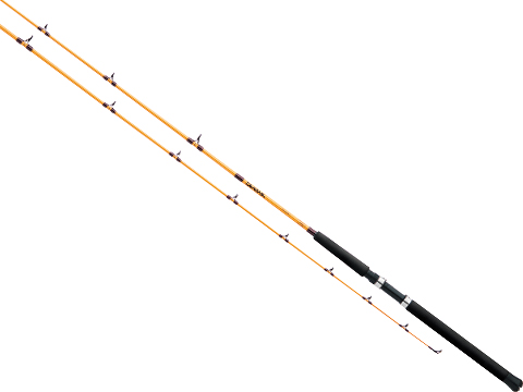 Daiwa FT Boat Conventional Fishing Rod (Model: FTB701HF)