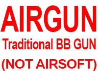 Air Guns (Not Airsoft)